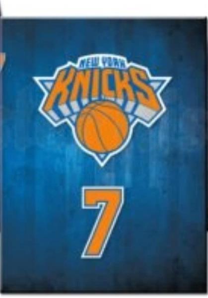 DIARIO POCKET 12 M  NBA